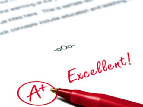Essay Writer Here Try Best Essay Writing Service Now